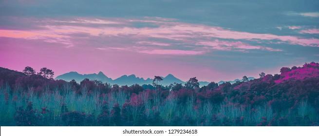 Misty autumn landscape. Fantasy tropical jungle forest in surreal colors. Concept landscape for mysterious background.