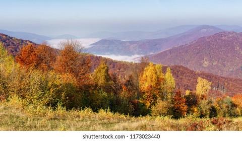 Misty autumn morning in Uzhansky national park, Ukraine, Mountain valleys in Slovakia, and in Poland - national park Bieszczady.