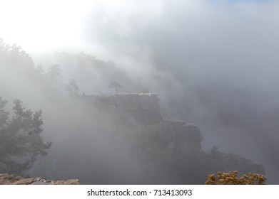 Misty Canyon