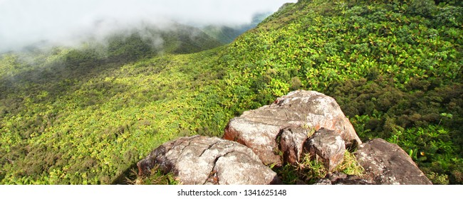 Misty clouds sweep over the rainforest in the mountains of El Yunque National Forest in Puerto Rico