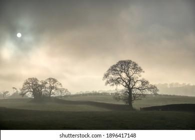 Misty countryside Landscape Cartmel English Lake District