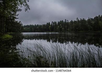 Misty dark lake