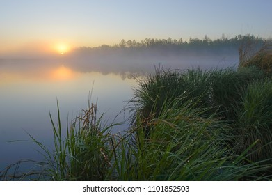 Misty dawn on the taiga lake. Bolon nature reserve. Khabarovsk region, far East, Russia.