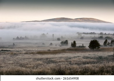 Misty dreamy landscape