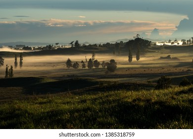 A misty early morning landscape with pastel colours, silhouettes, shadows and farmland  in NZ