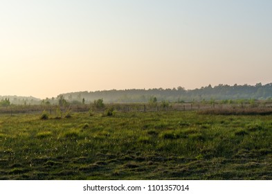 Misty evening by spring season in a peaceful landscape at the swedish island Oland