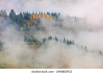 Misty Fog in Mountains valley -  landscape with colorful forest in Mountains hills, autumn season