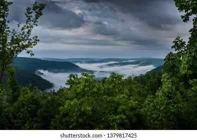 A misty and foggy morning from a vista overlooking the lush green Ozark mountains of Arkansas on an early summer morning. The fog settles into the forest valley as the overcast cloudy sky looms above.
