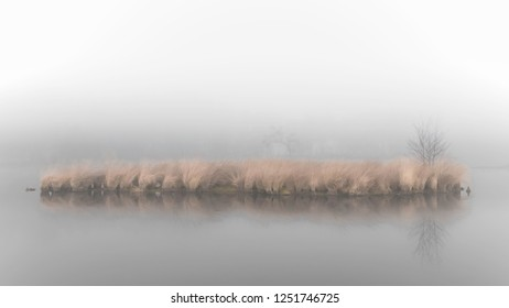 Misty grey atmosphere with yellow grass on a small island reflecting in the water of a fen at the Hatertse Vennen, Nijmegen, The Netherlands