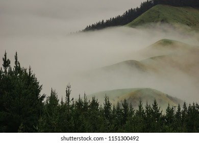 Misty hills at Te Pohue, New Zealand