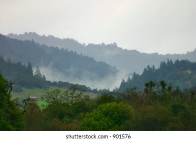 Misty Hillside