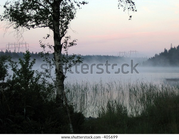 Misty lake at sunrise, with tree in foreground