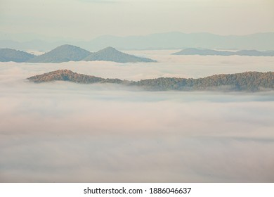 Misty landscape with  forest in Morning fog over and beautiful hilly landscape ,Treetops increased from foggy background