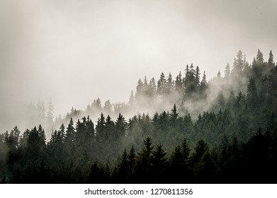 Misty landscape in the mountains