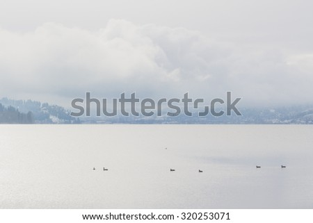 Misty landscape of winter on Wood Lake, Oyama, British Columbia.
