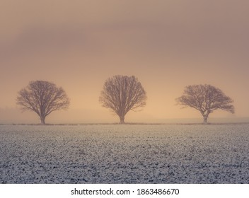 A misty lanscape with a snowfall during the sunrise. Rural lanscape of snowstorm in the morning. Misty, obscured look of the sunrise view through the falling snow.
