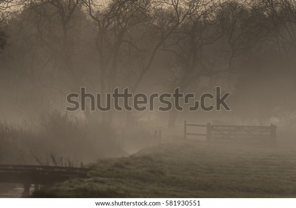 Misty meadow and fence Wiltshire England