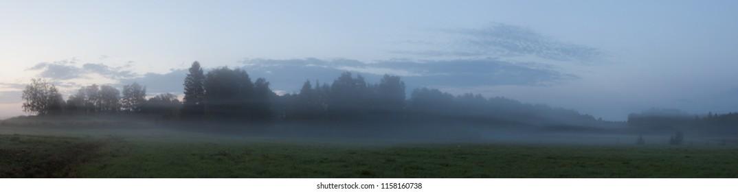 Misty meadow landscape at dawn