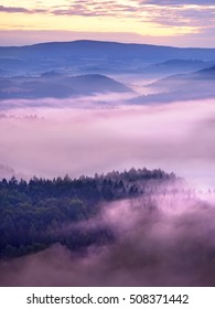 Misty melancholy daybreak in beautiful fairy valley. Peaks of rock trim creamy foggy clouds. Fog is pink  shinning . The fog is swinging between trees.