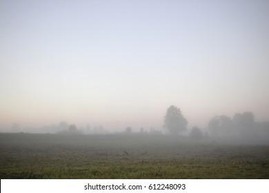 Misty morning before sunrise