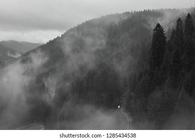 Misty morning in Black Forest. Misty mountains. Misty forest.