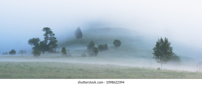 Misty morning in Carpathians. Panoramic view