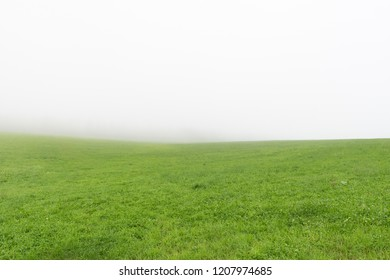 Misty Morning. Countryside landscape, with fields of grass
