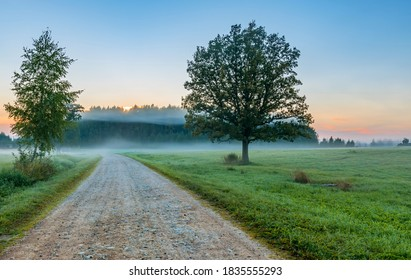Misty morning at countryside road, European rural landscape at dawn