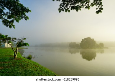 A misty morning at a lake