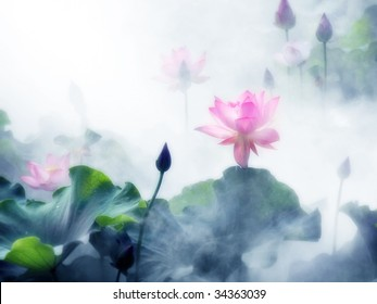 The misty morning lotus pond and flowers in early summer day.