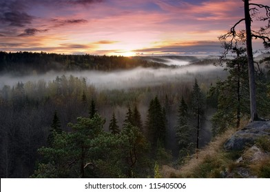 Misty morning in Noux National Park in Finland