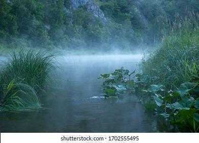 Misty morning on the Belaya river