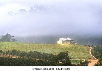 Misty Morning on the Plateau of Da Lat, Vietnam. It has a mild climate suitable for weekend stays for visitors
