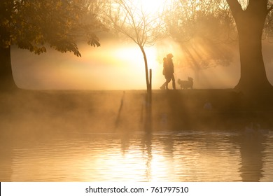 misty morning with sun shining through trees in the background and people walking and running