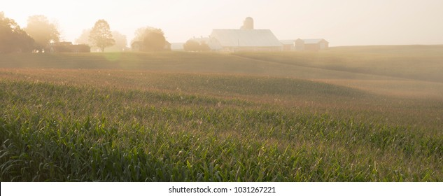 Misty morning sunrise illuminates a farm in Libertytown, MD. A beautiful country scene in misty light and rolling hills of Maryland.