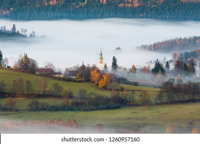 Misty morning with sunrise in a valley of Bohemian Sumava national park. Detail of forest, landscape of Czech Republic.