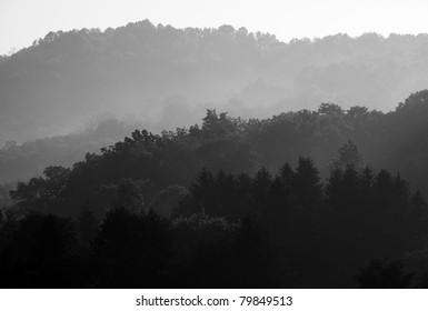 Misty Mountain Sunrise, Webster County, West Virginia, USA