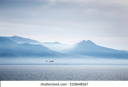 Misty mountain view. Birds flying over sea. Izmir bay in autumn.