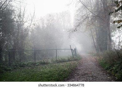 Misty and mysterious outdoor path