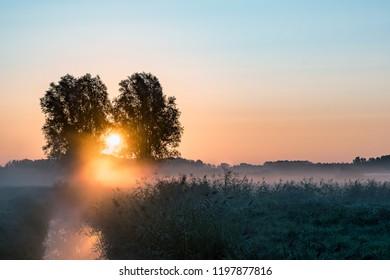 Misty orange sunrise