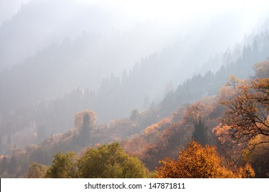 Misty perspective in autumn mountains