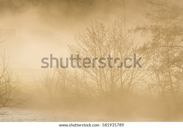 Misty river and tree background Wiltshire England