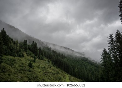 Misty scenery in the Austrian alps with pastures along steep mountains and uncertain weather conditions with fog floating through coniferous forest.