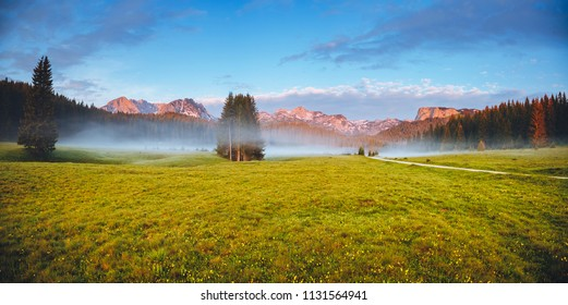 Misty summer day in the Durmitor National park. Location place village Zabljak, Montenegro, Balkans, Europe. Scenic image of peaceful alpine valley. Travel destination. Discover the beauty of earth.