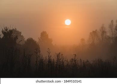 Misty sunrise in the meadow - Shutterstock ID 1849510141