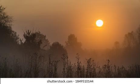 Misty sunrise in the meadow - Shutterstock ID 1849510144