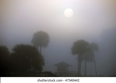 Misty sunrise over the beach