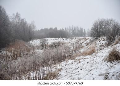 Misty winter day in Finland.