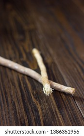 Miswak or siwak sticks over the wooden table. Great photo for your needs.