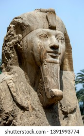 MIT RAHINA, EGYPT - MAY 03, 2013 : The bust of the alabaster sphinx of Amun-Ofis II at the ancient Egyptian capital of Memphis in northern Egypt. The statue is four and a half metres high .